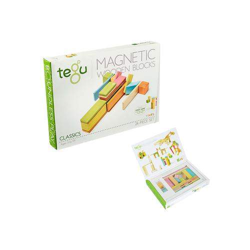 Magnetic Wooden Block Set Tints 24 stuks